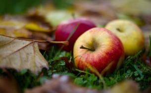 äpple.jpg
